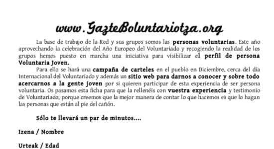 gazteboluntariotza4.png
